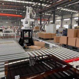 packing machine factory6
