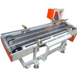 Chain Scraper Conveyor system
